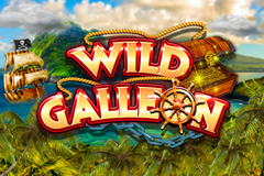 Wild Galleon